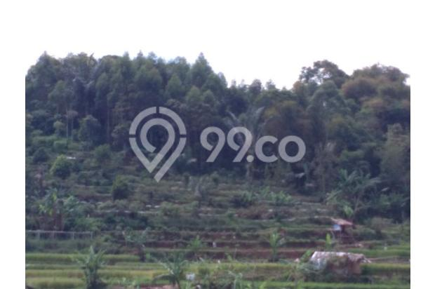 Beli tanah dapat Villa, Tanah murah di Ciwidey | Ru 14015002