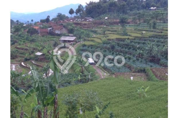 Beli tanah dapat Villa, Tanah murah di Ciwidey | Ru 14015019
