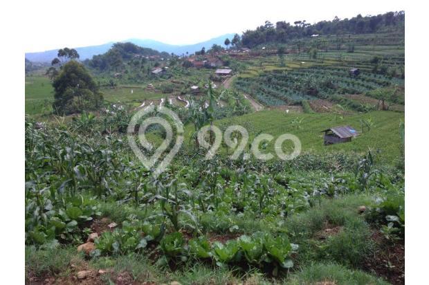 Beli tanah dapat Villa, Tanah murah di Ciwidey | Ru 14015031