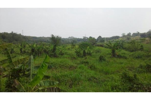 Rp274mily Tanah Dijual