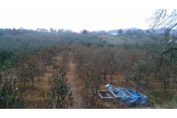 Rp1,28mily Tanah Dijual
