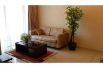 Dijual Apartemen central park 2br lantai rendah semi furnish