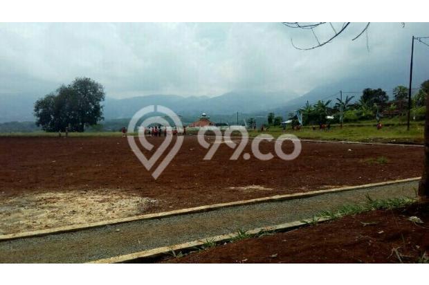 Fasilitas Jogging track 18202991