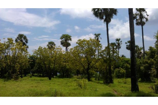 Rp49,4mily Tanah Dijual