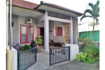 Rumah Murah Koala Regency 1lantai Siap Huni