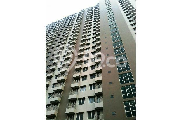Apartement Galery Ciumbuleuitn studip montai view 13697152