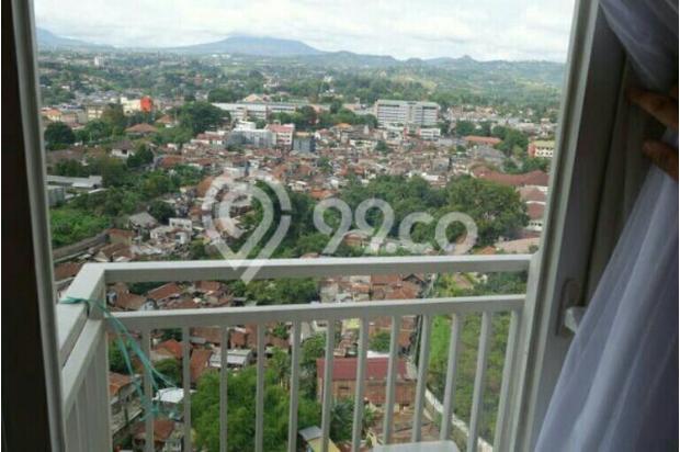 Apartement Galery Ciumbuleuitn studip montai view 13697179