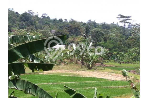 Tanah Persawahan di Bojong Koneng Sentul City 2349978