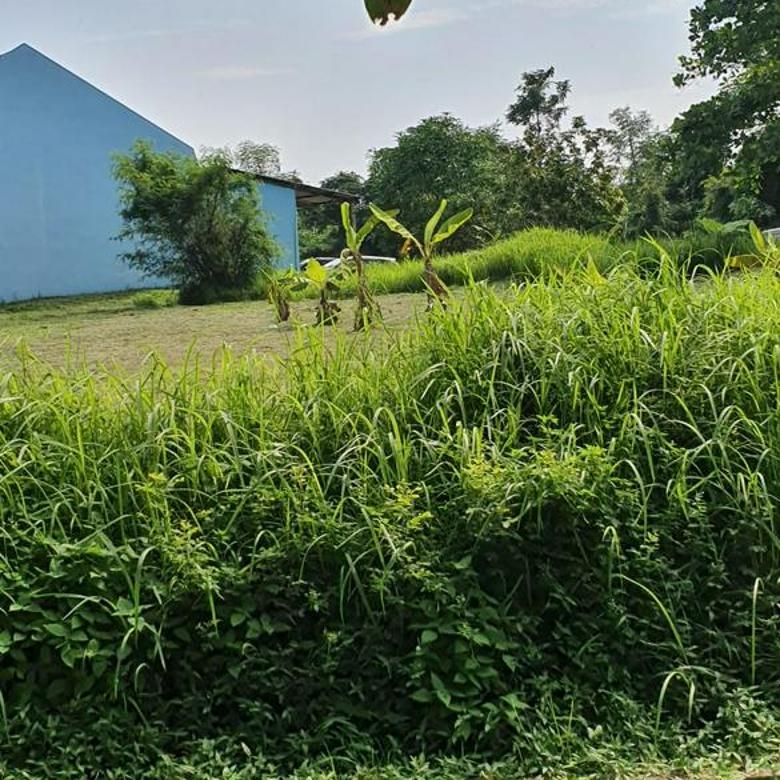 Tanah Siap Bangun Di Jl. Kusbiono Condrowibowo, Patemon Gunungpati