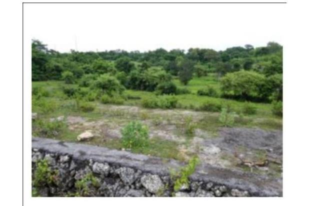 Rp768jt Tanah Dijual