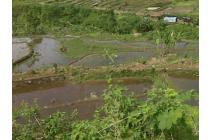 Dijual Tanah 9,1 Hektar di Sukajadi, Tamansari, Bogor OP599