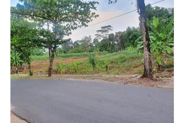 Rp52,9mily Tanah Dijual