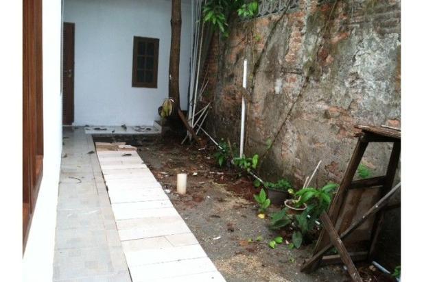 Taman Belakang 6153251