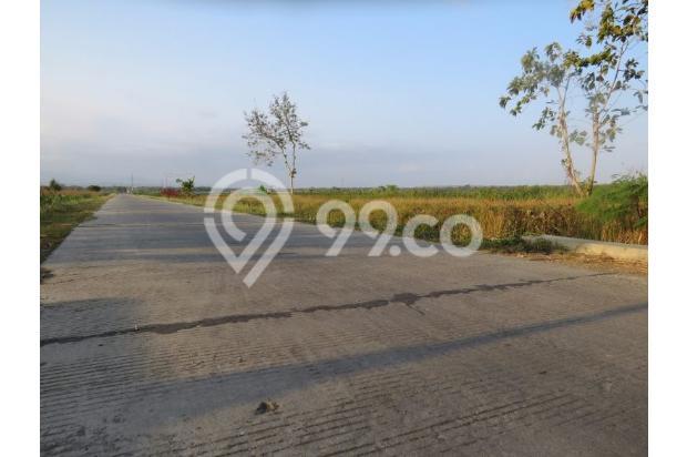 Jual 11 Unit Tanah Kaplingan di Wates Dekat Bandara 13696981