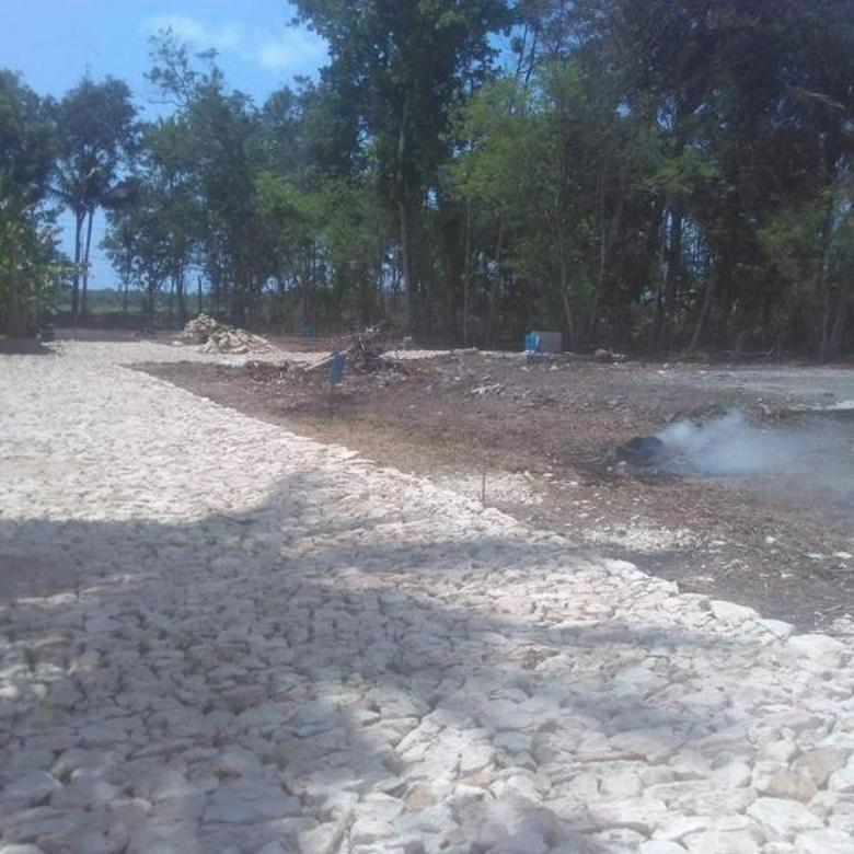 Tanah SHM Bandara Kulon Progo Harga 1 Jt Akses Lebar Pinggir Jalan Nasional