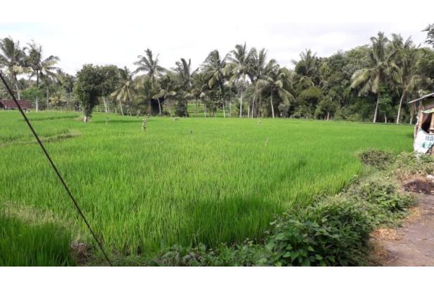 Rp3,64mily Tanah Dijual