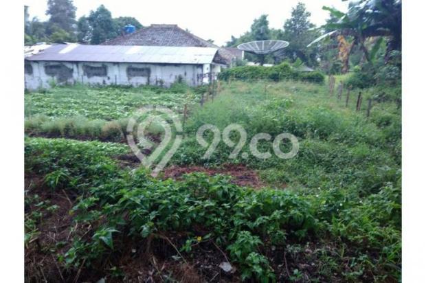 Dijual Tanah daerah Cisarua Bandung, Jual Tanah di Bandung 11041485