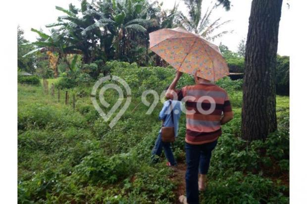 Dijual Tanah daerah Cisarua Bandung, Jual Tanah di Bandung 11041484