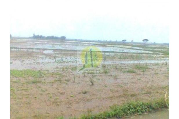Rp3,69mily Tanah Dijual