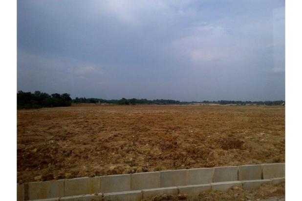 Rp44trily Tanah Dijual