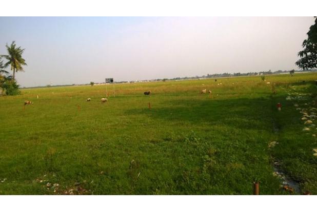 Rp35jt Tanah Dijual