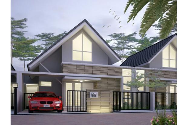 Design 12746615