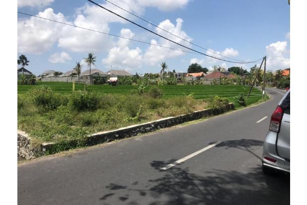 Rp3,92mily Tanah Dijual