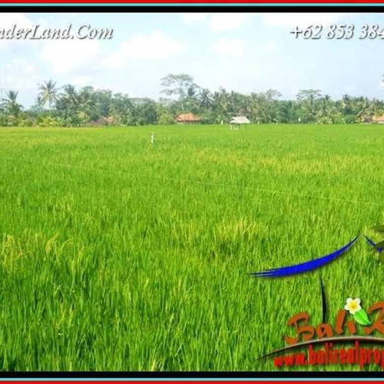 Affordable 400 sqm in Sentral Ubud