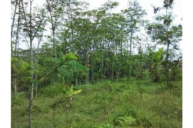 Rp1,61mily Tanah Dijual