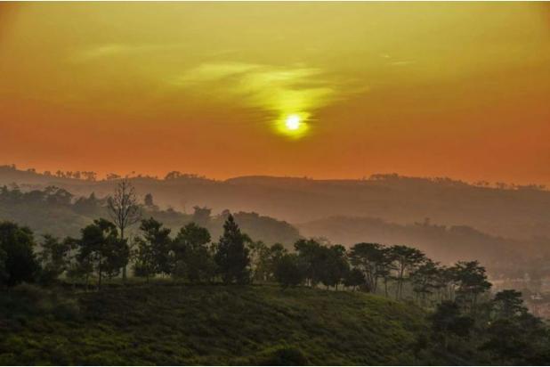 Investasi Masa Depan Tanah Kavling Murah di Puncak Jawa Barat - SHM 17794420
