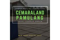 Kavling Tanah Cemaraland Area Kampus UNPAM Cocok Untuk Kosan