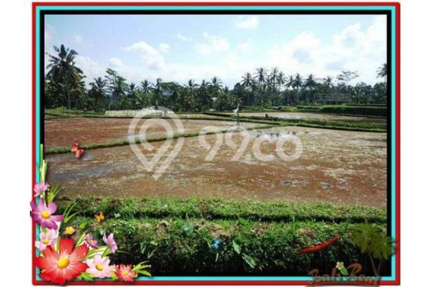 Investasi Properti, 1.000 m2  View Sawah di Sentral Ubud TJUB501  4292589