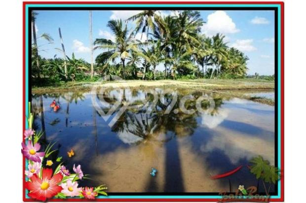 Investasi Properti, 1.000 m2  View Sawah di Sentral Ubud TJUB501  4292590
