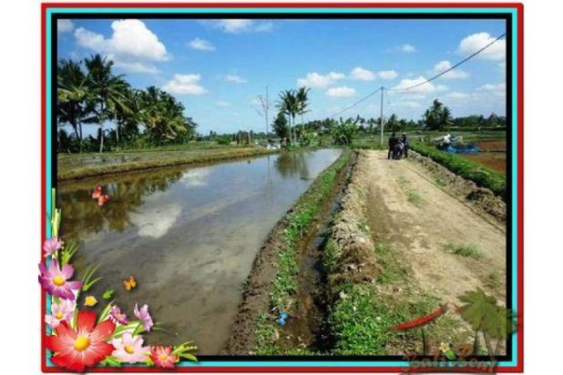 Investasi Properti, 1.000 m2  View Sawah di Sentral Ubud TJUB501  4292593