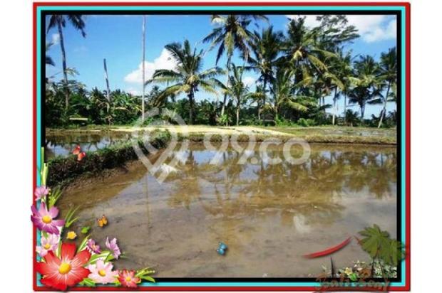 Investasi Properti, 1.000 m2  View Sawah di Sentral Ubud TJUB501  4292596
