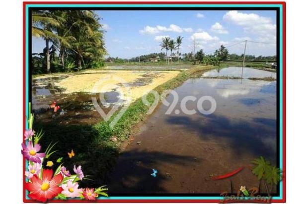 Investasi Properti, 1.000 m2  View Sawah di Sentral Ubud TJUB501  4292599
