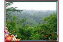 Investasi Properti Strategis 1.300 m2  View Tebing dan Kebun di Ubud TJUB48
