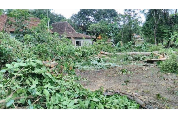 Tanah Konsep Cluster Paling Murah Ya Kaveling Pamungkas 15894678