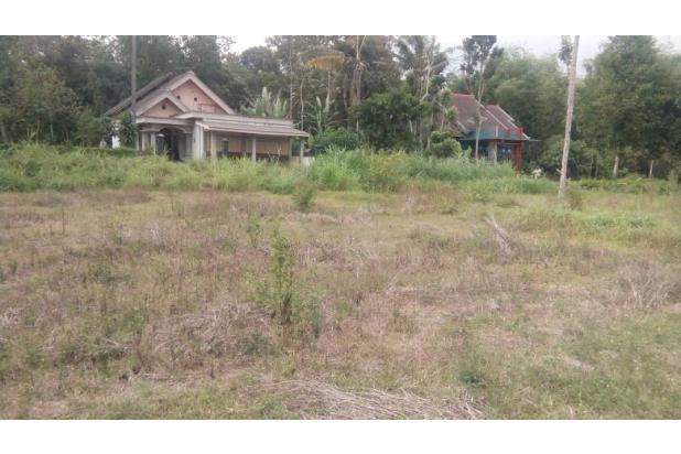 Rp310jt Tanah Dijual