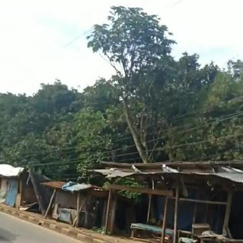 Lahan Luas di Zona Kuning Parung Bogor Nego Tipis