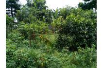 Tanah strategis cocok untuk invest di Terusan Sutami