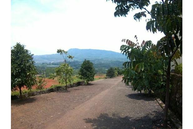 Rp540mily Tanah Dijual