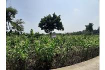 Tanah murah belakang Bogor Nirwana Residence (BNR)