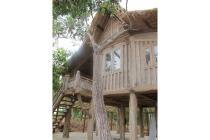 Di jual rumah Gladang asli kayu ulin berkualitas