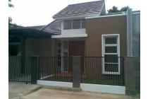 rumah minimalis cocok untuk bini ke dua