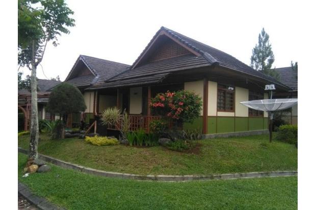 depan villa  6743027