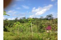 Dijual tanah 2 hektar Km 10 karang joang balikpapan