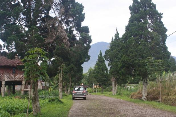Investasi Kavling Villa Puncak Cipanas, Green Montana Village 16225630