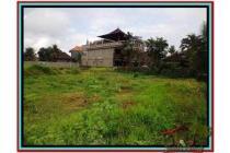 Murah sangat Strategis Tanah 3.200 m2 Sentral di Ubud E510