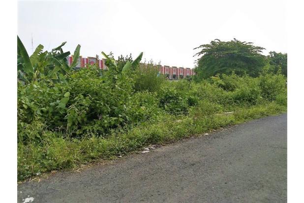 Investasi Tiada Banding, Tanah Super Strategis JL Jambon 17794711